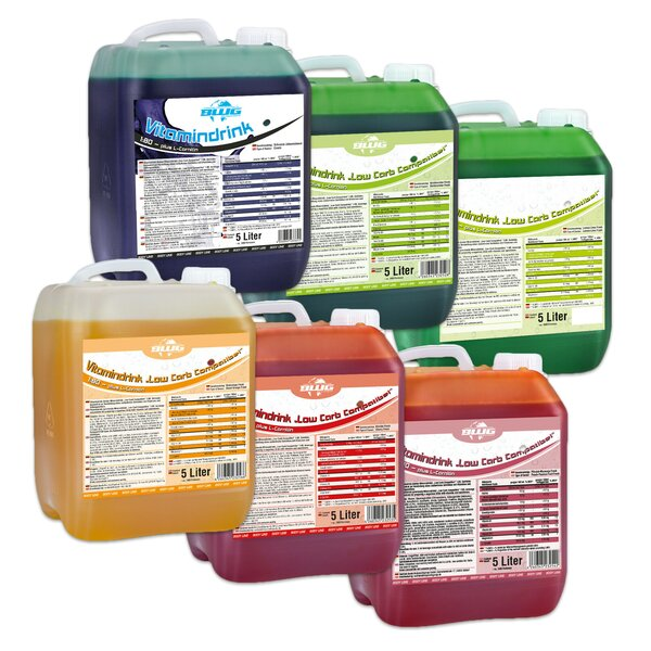 BWG Vitamindrink / Mineraldrink f. Schankanlagen 5 Liter